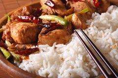 Kung Pao Huhn und Reis auf einem Plattenmakro horizontal Lizenzfreies Stockbild