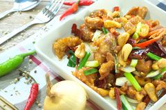 Kung Pao Thai food Royalty Free Stock Photos