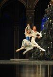 Kungarike för godis för fält för Pasde deux- andra handling i andra hand - balettnötknäpparen Royaltyfri Bild
