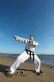 Kungfu Stock Image
