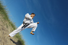 Kungfu Royalty Free Stock Photography