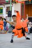 Kungfu 13 van Shaolin Royalty-vrije Stock Foto's