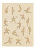 Kungfu Royalty-vrije Stock Afbeelding