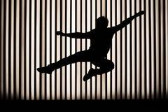 Kungfu Lizenzfreie Stockfotografie