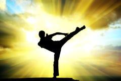 Kungfu bij de rand Royalty-vrije Stock Fotografie