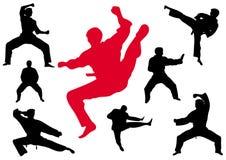 Kungfu del karate stock de ilustración