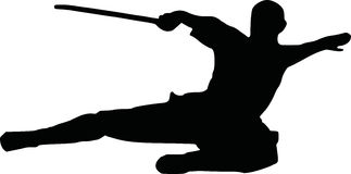 Kungfu silhouette. Fighter combat karate Royalty Free Stock Images