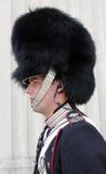 Kunglig dansk Guard arkivfoto