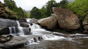 Kunglig födelse- vattenfall Fotografering för Bildbyråer