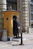 Kunglig Guard Royaltyfri Fotografi