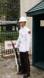 Kunglig Guard av Thailand. Royaltyfri Fotografi