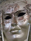 Kunglig maskering Royaltyfri Fotografi