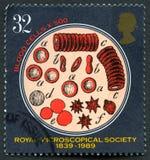 Kunglig Microscopical stämpel för samhälleUK-porto arkivfoton