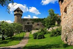 kunglig person för trädgårdbudapest slott Arkivbild