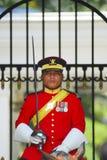Kunglig vakt arkivbild