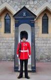 Kunglig vakt på windsorslottet royaltyfria bilder