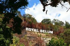 Kungliga Belum royaltyfri fotografi