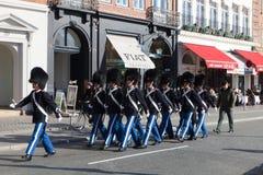Kungliga guards Arkivfoto