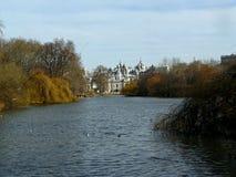 Kungliga mjauer, London royaltyfri fotografi