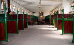 kungliga stall Arkivfoton