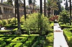 Kungliga trädgårdar för Alcazar + Galeria de Grutescos, Seville, Andalucia, Spanien Royaltyfri Fotografi
