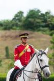Kungliga vakter arkivbild