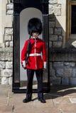 Kungligt vaktanseende nära ett bås royaltyfri bild