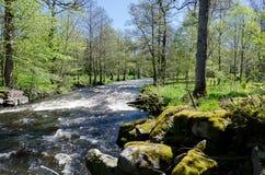Kungsbacka rzeka Zdjęcia Royalty Free