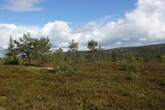 Kungsleden Royalty Free Stock Photo