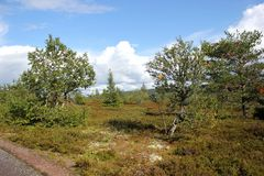 Kungsleden Royalty Free Stock Photography