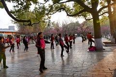 KUNMING, CHINA, EL 8 DE FEBRERO DE 2017: la gente exerciseing en el parque del lago green de Kunming, Kunming fotos de archivo