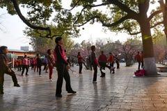 KUNMING, CINA, L'8 FEBBRAIO 2017: la gente exerciseing nel parco del lago green di Kunming, Kunming fotografie stock libere da diritti