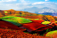 Kunming Dongchuan Red Land. Kunming Dongchuan Red Land, Industry, Agriculture, Natural Stock Images