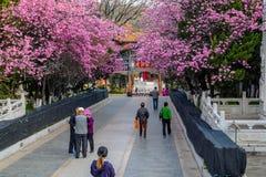 KUNMING-MARCH 13, 2016 Handelsresande i Yuantong den buddistiska templet, Yuantong den buddistiska templet är den mest berömda bu Royaltyfri Foto