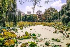 Kunming's Green Lake Royalty Free Stock Photo