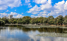 Kunming's Green Lake Stock Photography