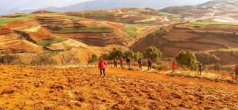 Red earth in yunnan province, China. royalty free stock image