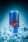 Kunna av den Red Bull energidrinken royaltyfri bild