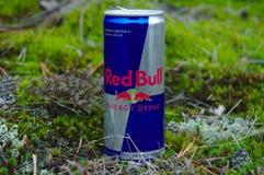 Kunna av Red Bull arkivbild