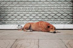 Kunst des Entspannung lizenzfreies stockfoto
