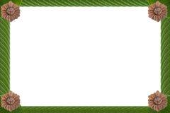 Kunst des grünen Blatt- und Ideenkonzeptes Stockbilder