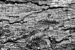 Kunst des Holzes Stockfotografie