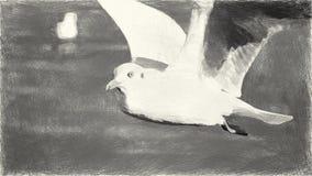 Kunst, die Schwarzweiss-Vogel auf Papier zeichnet lizenzfreie abbildung