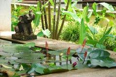 Kunst en poolontwerp in tuin Stock Afbeeldingen