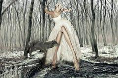 Kunst-Fotographien-Mädchen und der Wolf Stockbilder