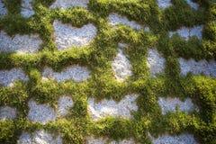 Kunst-Gartenpfad lizenzfreies stockbild