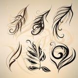 Kunst geschilderde veren. vectorillustratie Royalty-vrije Stock Afbeelding