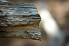 Kunst in Holz 3 Stockfotos