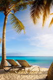 Kunst tropisch strand stock foto