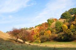 Kunst van aard De kleuren van de herfst royalty-vrije stock afbeelding